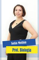 65 Sofia Molina